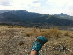 My New Balance shoes at the top of one of my favorite trails. Sunshine come back!