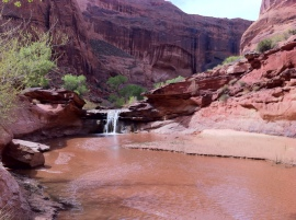 The famous waterfall from Coyote Gulch pictures
